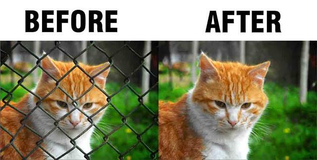 Photoshop में Fences रिमूव करने  के सिंपल स्टेप्स : Photoshop Hindi Tips